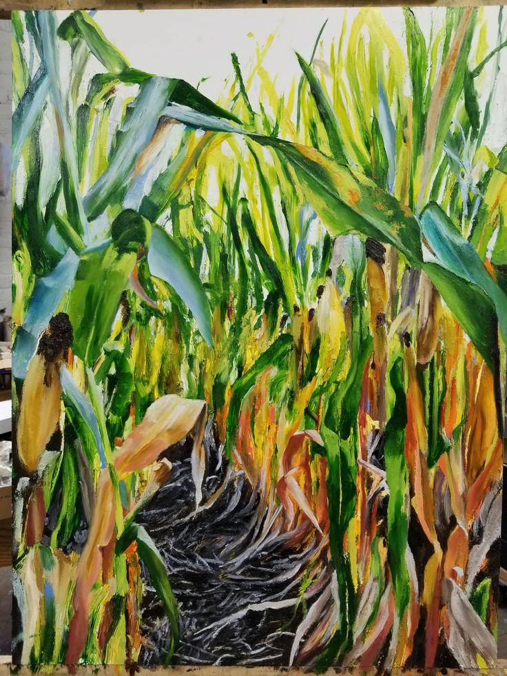 Smith's Fall Corn