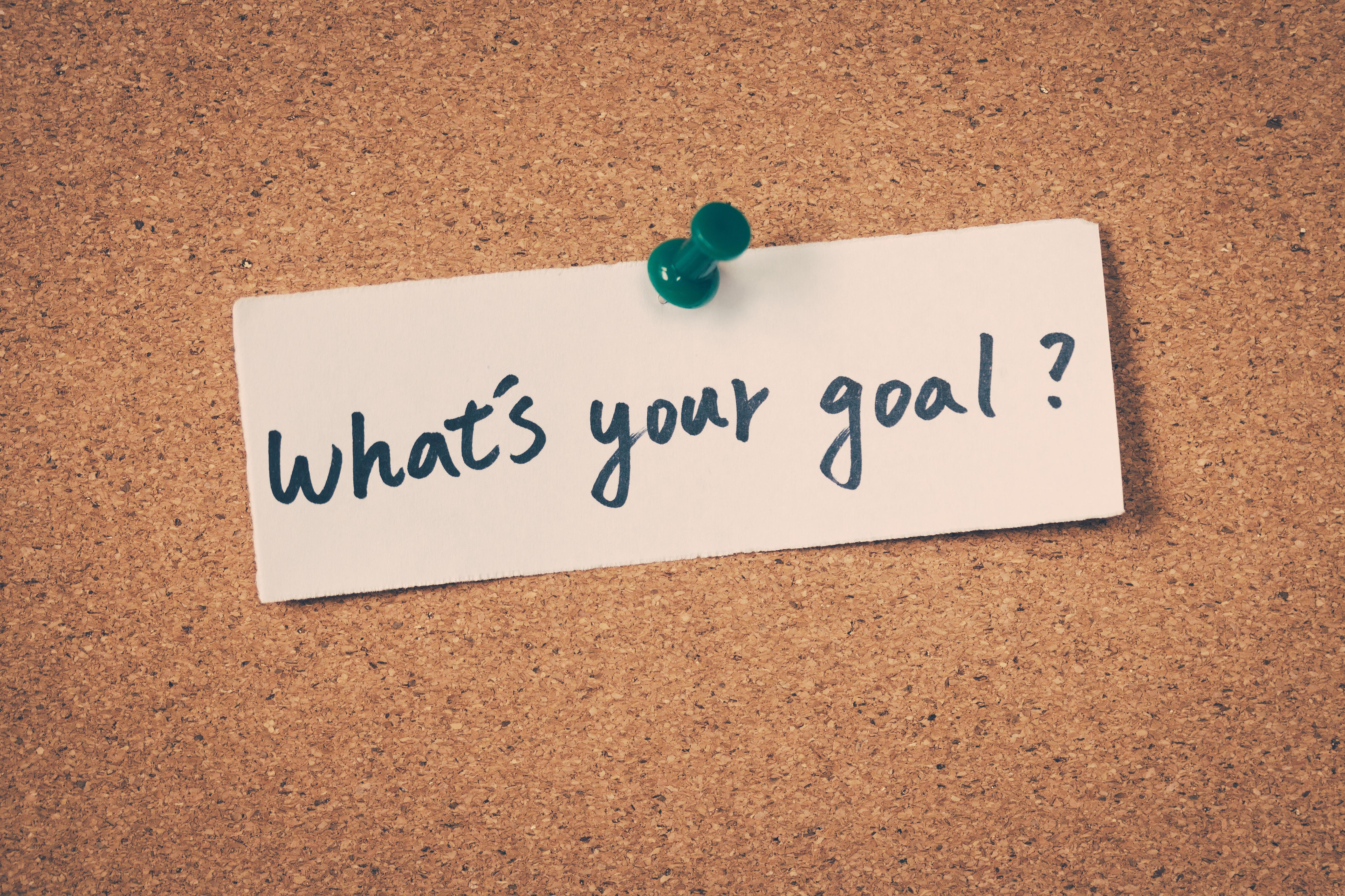 The Goal Setting Workshop