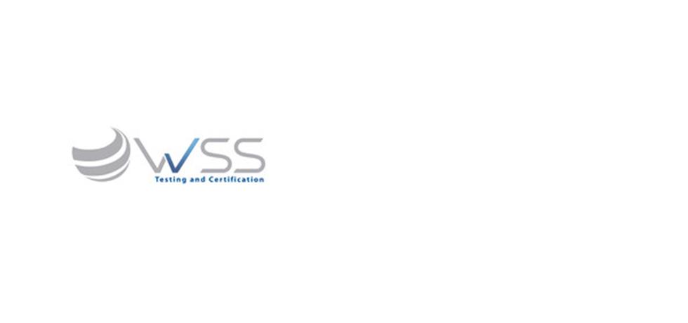 WSS alianzas.png