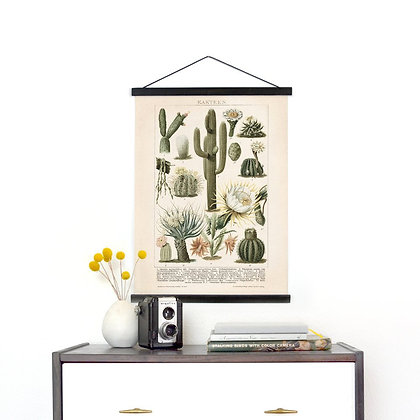 Vintage Cactus Illustration Pull Down Chart - Canvas Palm Springs Diagram Print.
