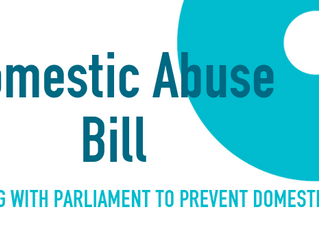 Domestic Abuse Bill & Parliament