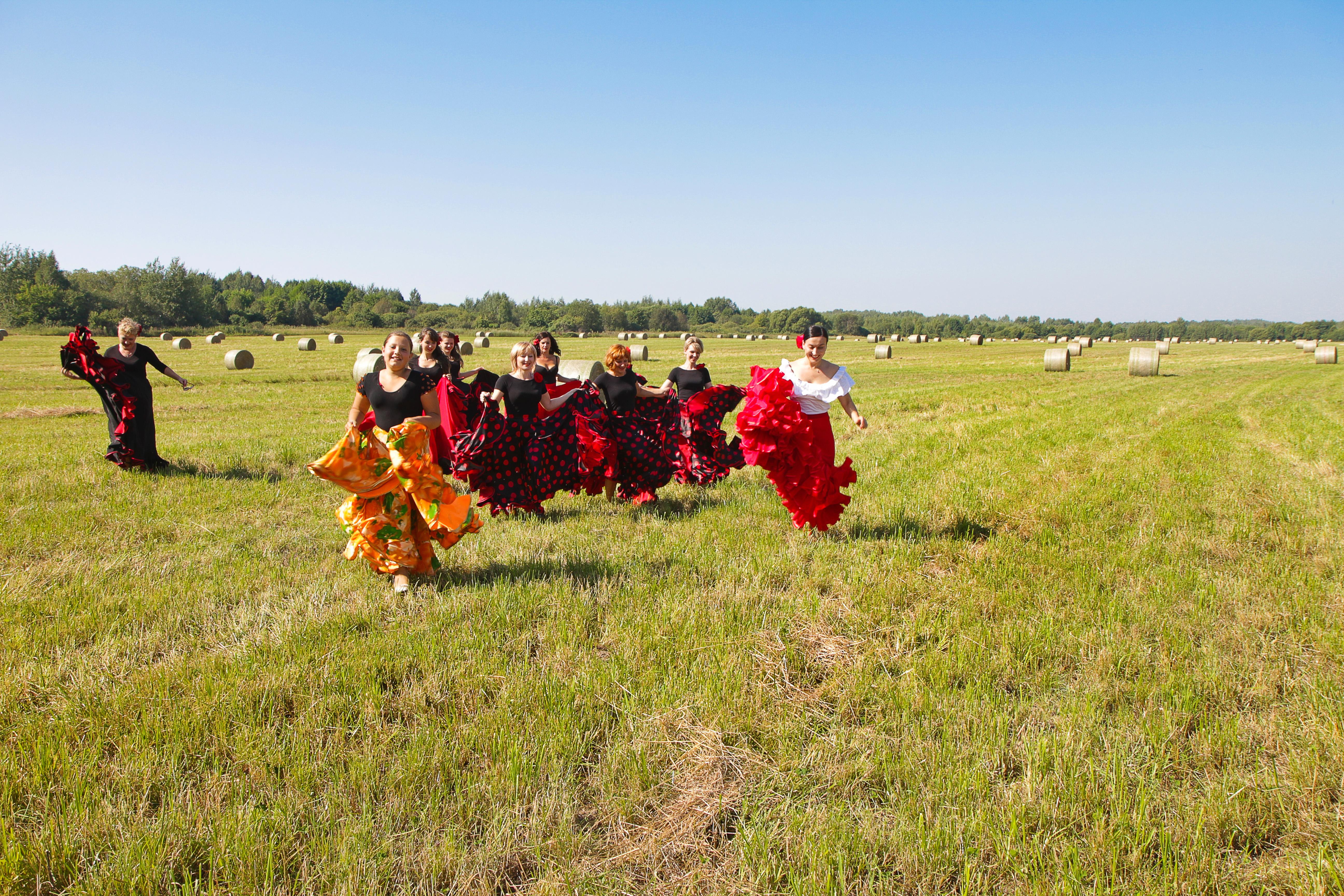 Flamenco Surazh 2012_3