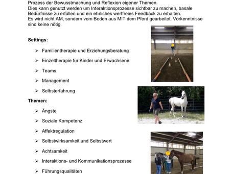 Pferdegestützte Psychotherapie und Beratung