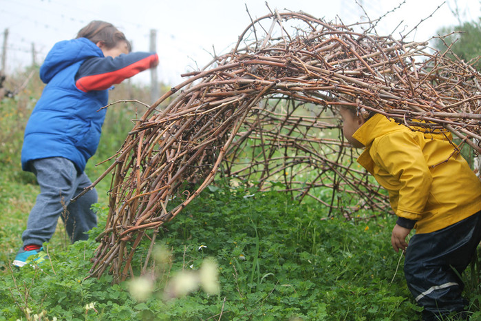 Pruning: The Winter Vineyard & A Cane Dwelling