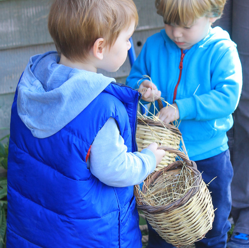 Counting the Eggs