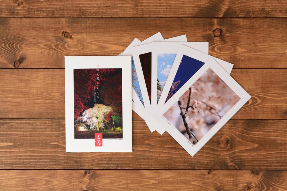 沼田公園ポストカードのデザイン