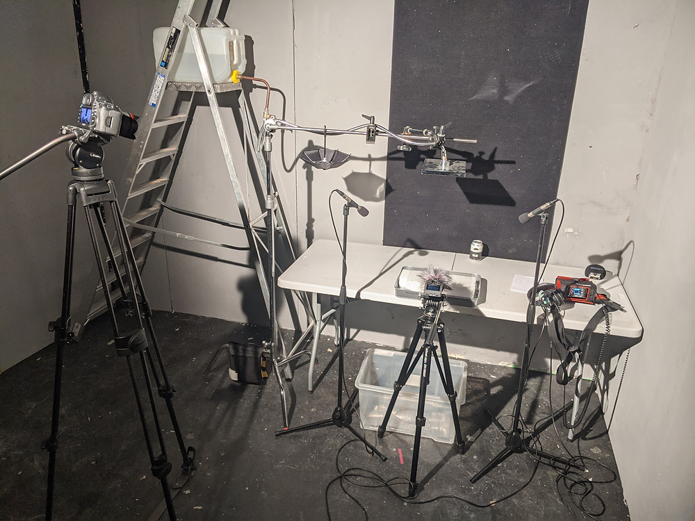 Wesley recreated the set for a solo audio session using a stereo pair of NT5s and a Zoom F6 with Shotgun Mic.
