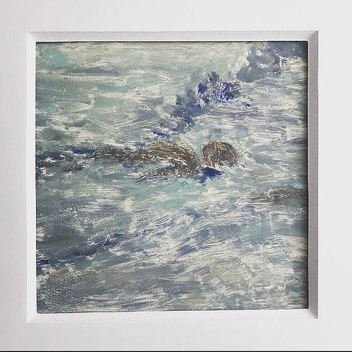 Para la ave del océano 08