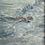 Thumbnail: Para la ave del océano 08