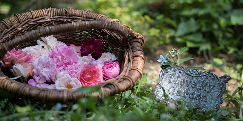 【昼の部】秘密の花園