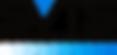svts logo1.png