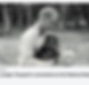 Screen Shot 2020-05-03 at 12.14.42 PM.pn
