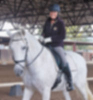 Horseback riding lessons and training, Grand Junction, CO.