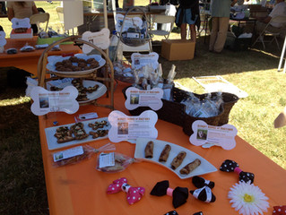 The Hungry Dawgz Vegan Dog Treats Launched at the 2012 WorldFest Event in Lake Balboa