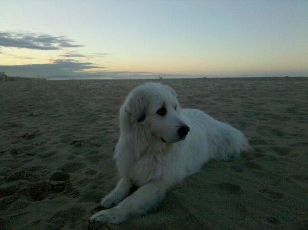 Sara Bear at her favorite spot