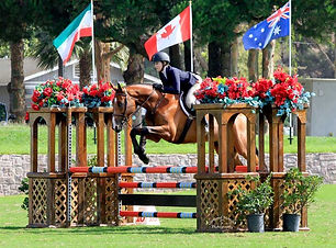 Equitation_Hunter RiverCross Nobility.jp