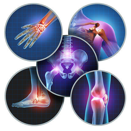 Saltillo physical therapy