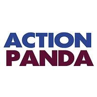 Action Panda.jpg