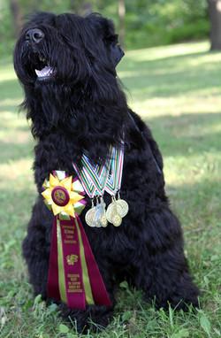 Yushka with her IABCA awards