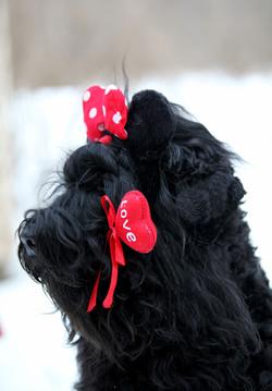 Danika Valentine