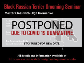 COVID 19 postponing of the event.