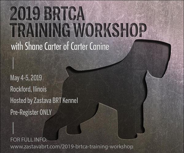 2019-BRTCA-Training-Workshop (2).jpg
