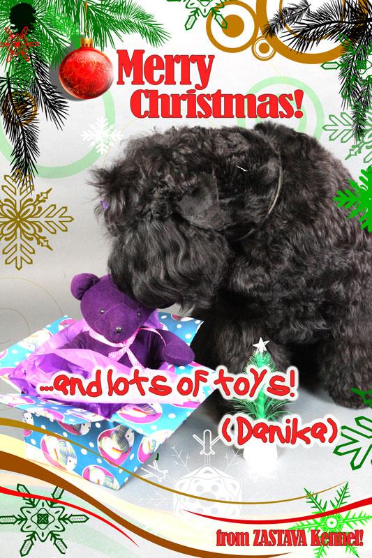 Zastava's-Christmas-Card-2014