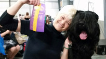 AKC Show. Yushka is winning Best of Breed and a major toward her AKC CH Title!
