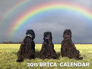 2015 BRTCA Calendar made and donated by Zastava BRT Kennel.