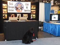 BRTCA Meet the Breed Booth