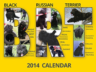 2014 BRTCA Calendar made and donated by Zastava BRT Kennel.