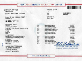 Congratulations to Jordan on his full Health Certification!