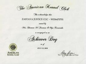 Two AKC Achiever Dog Awards for Zastava!