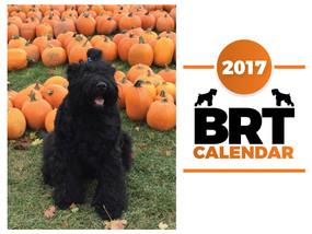 2017 BRT Calendar by Zastava Kennel