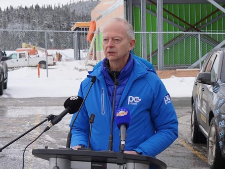 Q&A with PC leader Ches Crosbie
