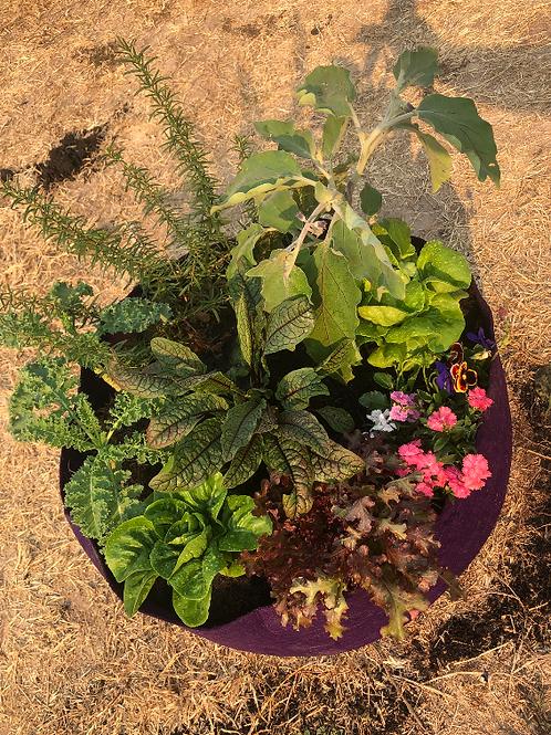 My Little Garden - Round Set (60 cm)