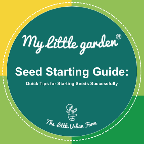 Seed Starting Guide - Practical and Simple