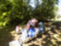 Planting coneflowers.jpg