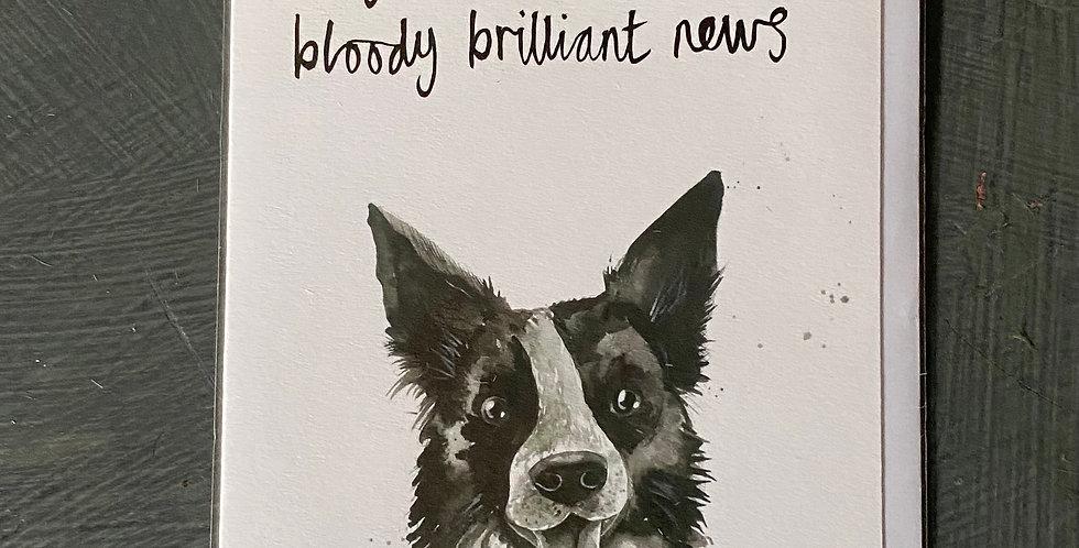 Brilliant News Card