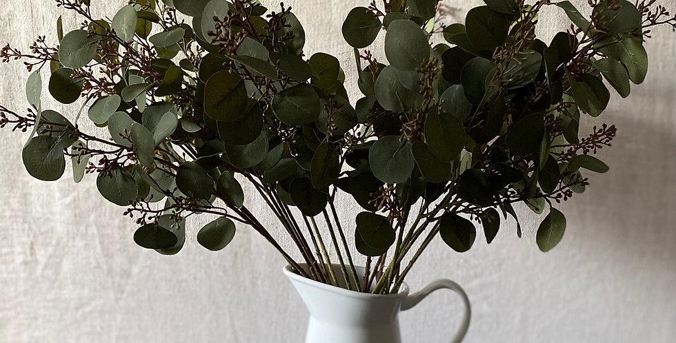 Eucalyptus with Seeds Spray