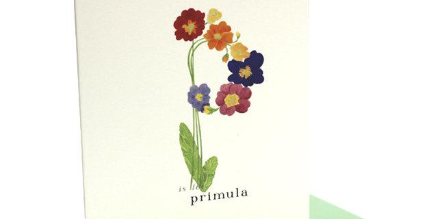 'p' Card