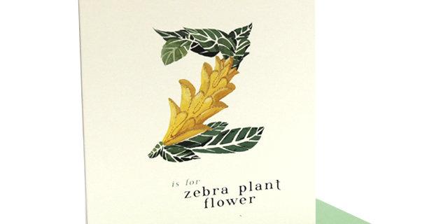 'z' Card