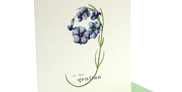 'g' Card