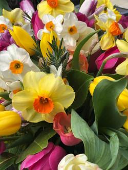 Seasonal Spring Selection