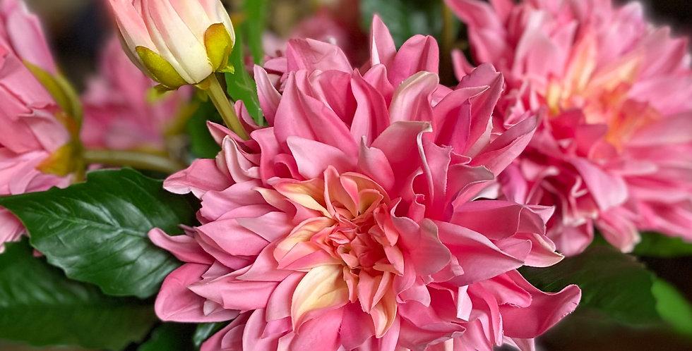 Real Feel Pink Dahlia