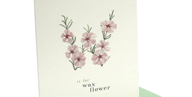 'w' Card