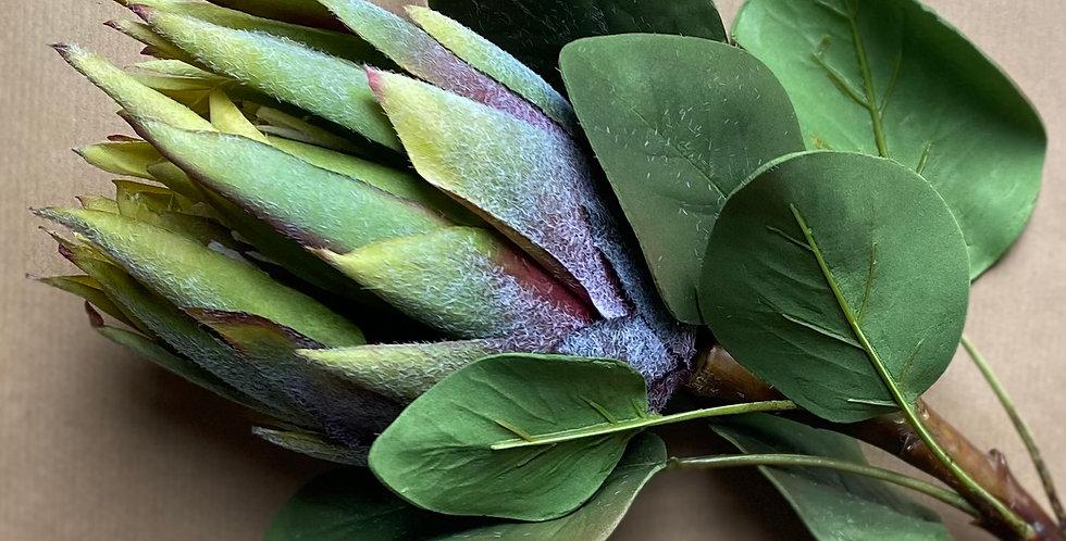 King Protea -Green