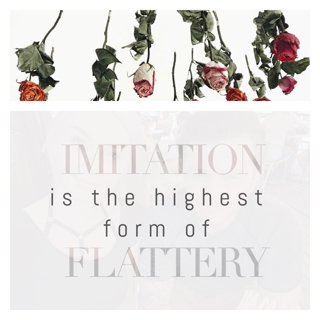 Imitation is the highest form of flattery | Mummy Blogger Parent ...