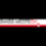 SWISS MEDTECH Logo.png