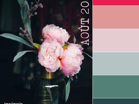 Suggestions de palettes de couleurs